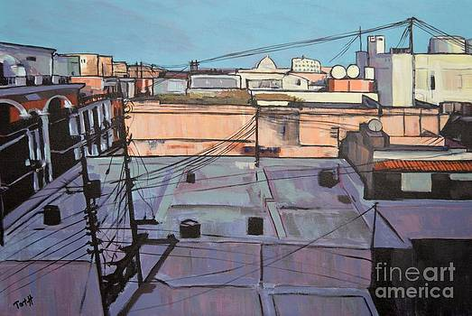 Rooftops of Old San Juan by Laura Toth