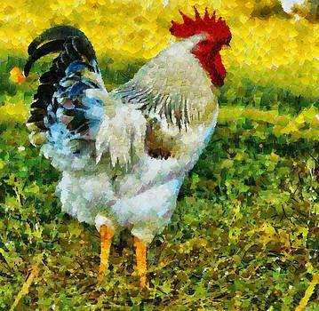 Rooster Series II by Kathy Jennings
