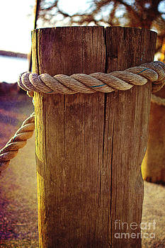 Rope Around the Pile by A New Focus Photography