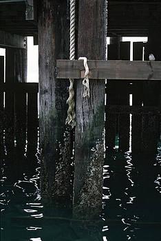 Matt Swinden - Rope on a piling
