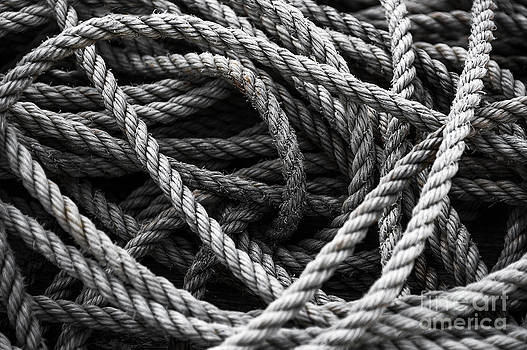 Svetlana Sewell - Ropes