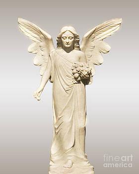 Rose Angel by Josephine Cohn