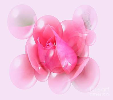Rose Bubble Abstract by Judy Palkimas