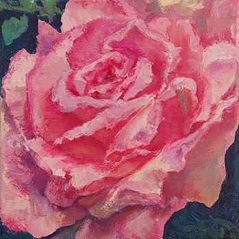 Rose by Christine Lytwynczuk