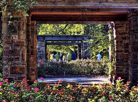 Rose Garden in Fort Worth by Janet Maloy
