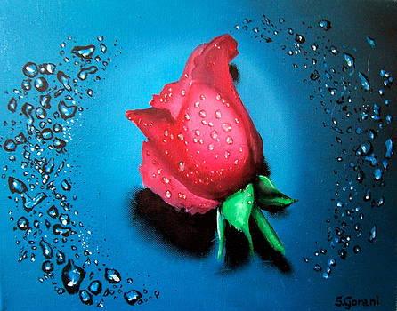 Rose by Geni Gorani