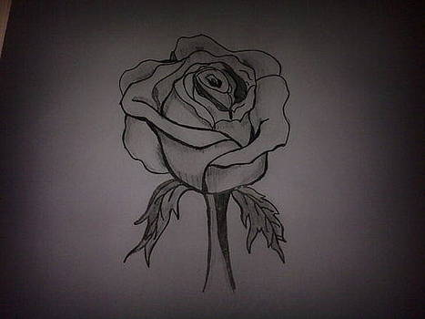 Rose by Laurie Kanat