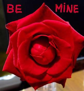 Rose Of Romance by Fineartist Ellen