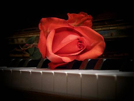 Rose on Piano by Joyce Kimble Smith