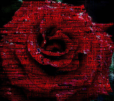 Rose poem by Nicole Champion