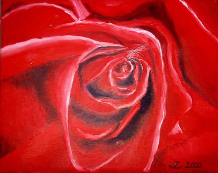 Rose by Sandra Yegiazaryan