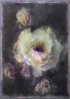 Rose Spray by Jill Balsam