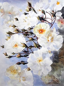 Wartercolor of white roses on a branch I call Rose Tchaikovsky by Greta Corens