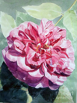 Watercolor of a Pink Rose in Full Bloom Dedicated to Van Gogh by Greta Corens