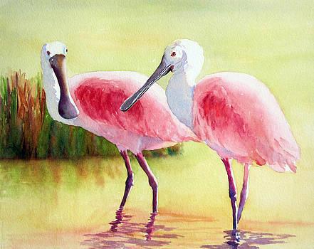 Roseate Spoonbills by Judy Mercer