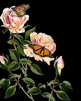 Roses and Butterflies by Anthony Seeker