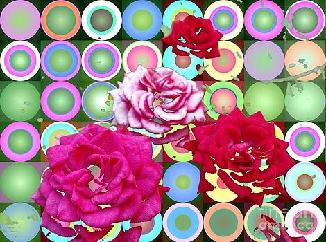Roses and Circles and Colors by Dana Hermanova