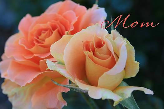 Roses for Mom by Marna Edwards Flavell