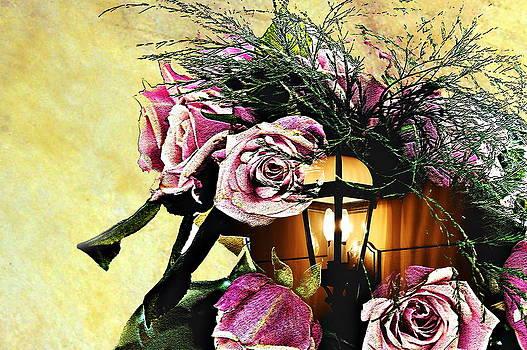 Roses in Lantern by Frank Garciarubio