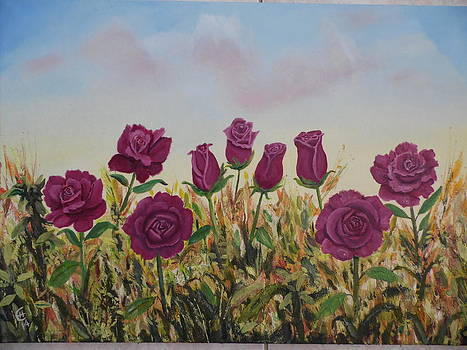Roses In Wild Field by Ethos Lambousa