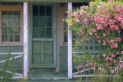 Roses of Nantucket by Cheryl Wood