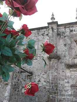 Roses of San Javier by Marie-Pierre Sabga