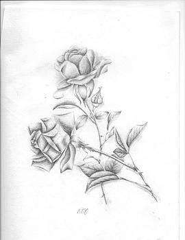 Roses by Rebecca Christine Cardenas