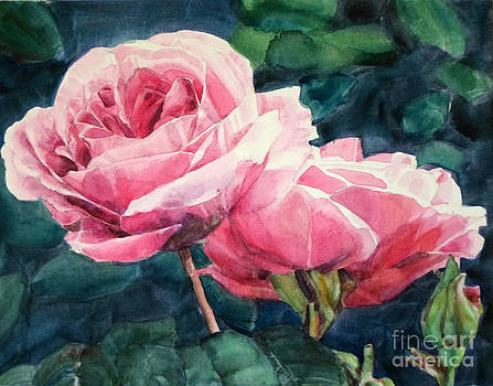 Watercolor of Two Luscious Pink Roses by Greta Corens