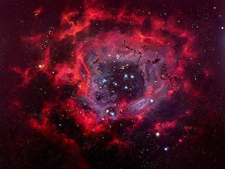 Marie Green - Rosetta Nebula