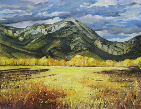 Ross Peak at Springhill Montana by Paintings by Parish