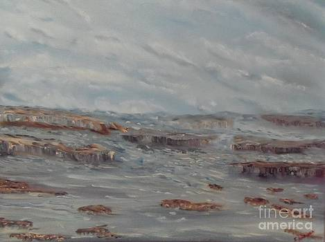 Rough Seas by Isabel Honkonen