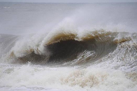 Rough Seas by Leah Reynolds