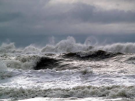 Deborah Hughes - Rough Waves