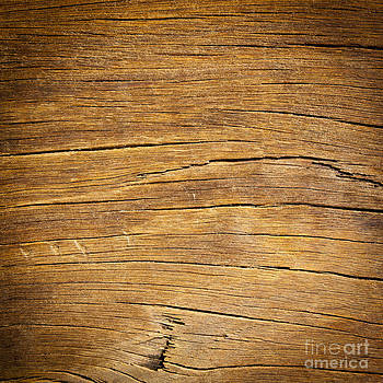 Tim Hester - Rough Wood