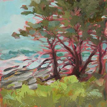 Roughening Seas by Mary Brooking