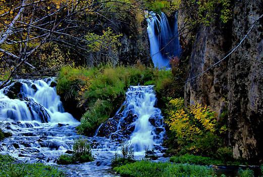 Matthew Winn - Roughlock Falls in Autumn