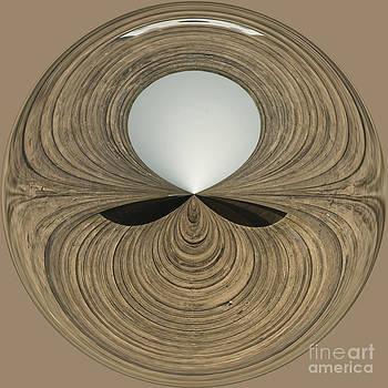 Anne Gilbert - Round Wood