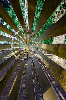 Alexandre Martins - Round Wooden Footbridge