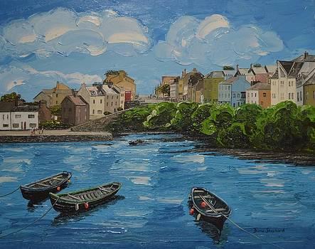 Roundstone Harbour Connemara Ireland by Diana Shephard