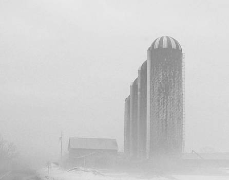 Rosemarie E Seppala - Row Of Silos In Fog