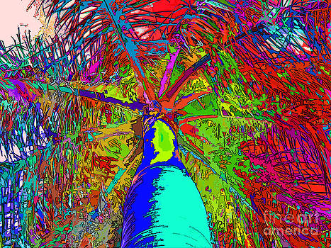 Royal Palm by Keri West