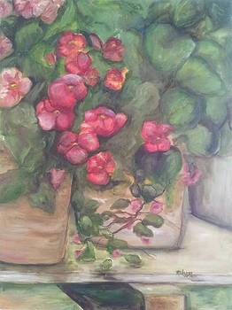 Ruby Begonias for Aunt Chickie by Maria Milazzo