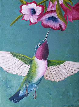 Ruby-Throated Hummingbird by Cecilia Stevens