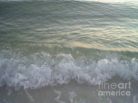 Ruffled Waves by Leslie Fagan