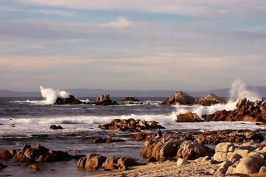 Art Block Collections - Rugged California Coast