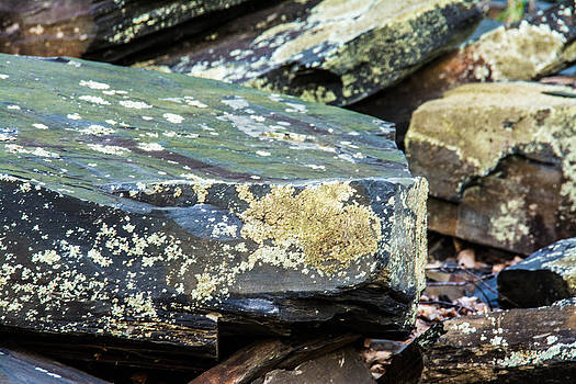 Rugged Rocks by Jason Brow