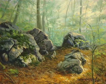 Rugged Trail By David Henderson