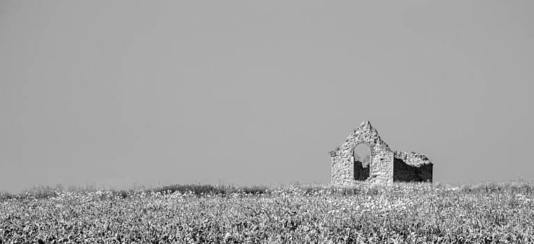 Ruin by Bob Kemp