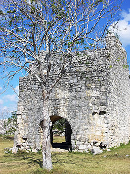 Ramunas Bruzas - Ruins Tree