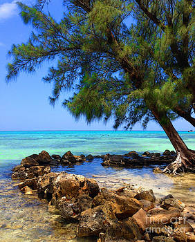 Rum Point Cove by Jerry Hart